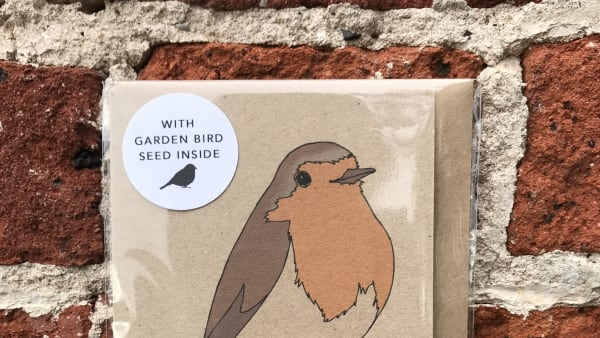 Kate Broughton - Seed Card Robin