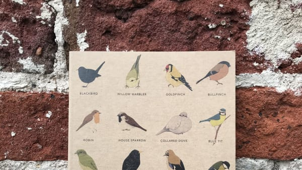 Kate Broughton - A5 Garden Birds Notebook