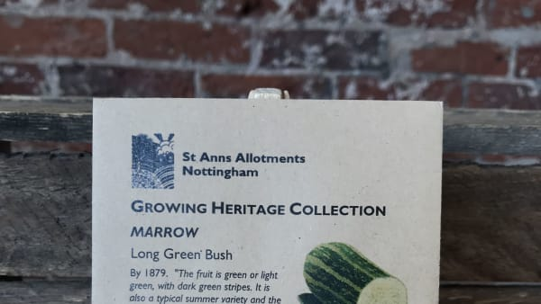 Heritage Seeds - Marrow