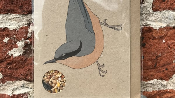 Kate Broughton - Seed Card Nuthatch