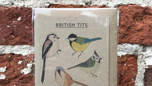 Kate Broughton - British Tits Card