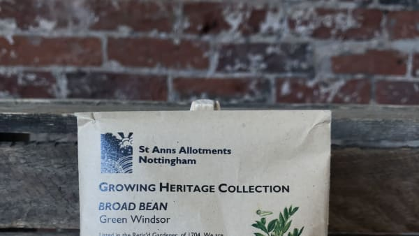 Heritage Seeds - Broad Bean