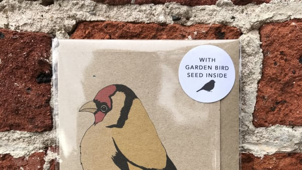 Kate Broughton - Seed Card Goldfinch