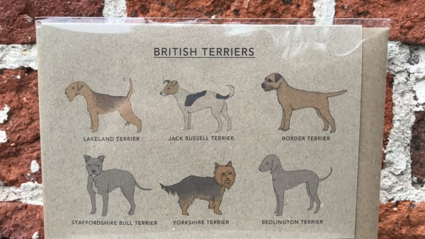 Kate Broughton - British Terriers Card